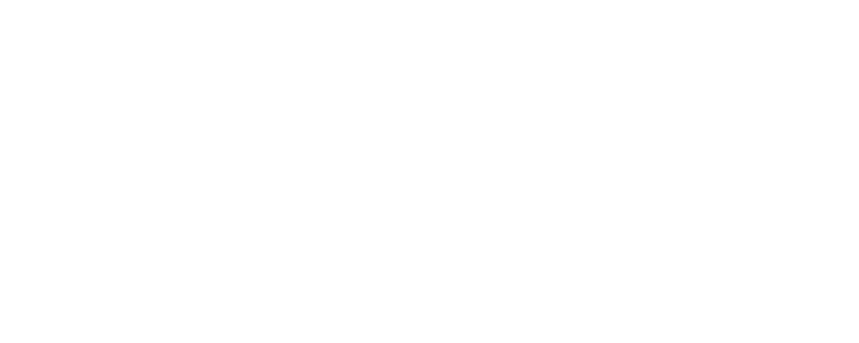Sayisi Dene Trust